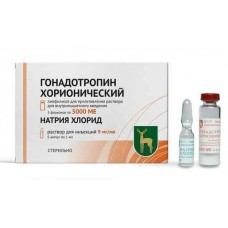 Гонадотропин хорионический пор. д/п ин. р ра 5000 ед  №1