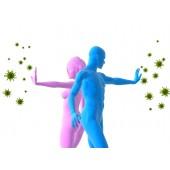 Иммунная система и противовирусные средства